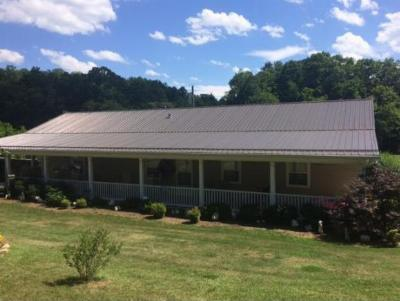 Rogersville Single Family Home For Sale: 124 N Fork Branch Road