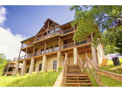 Butler Single Family Home For Sale: 1293 Sugar Grove Church Rd