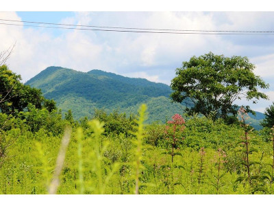 Butler Residential Lots & Land For Sale: Mountain View