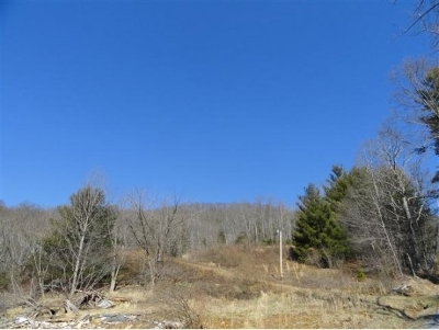 Butler TN Residential Lots & Land For Sale: $75,000