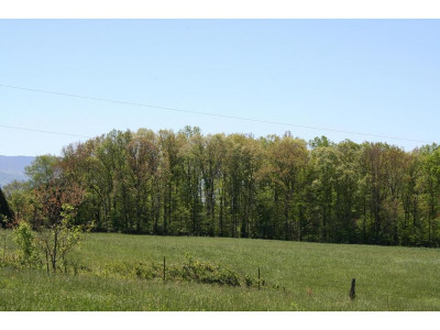 Greene County Residential Lots & Land For Sale: Lot 16 Old Stage Road