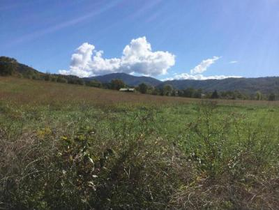 Greene County Residential Lots & Land For Sale: tbd Orrick Lane