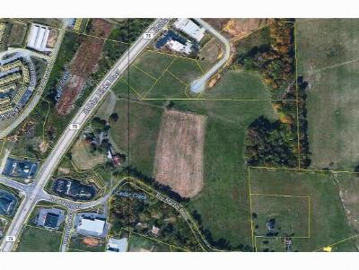 Johnson City Residential Lots & Land For Sale: 370 Roy Martin Rd