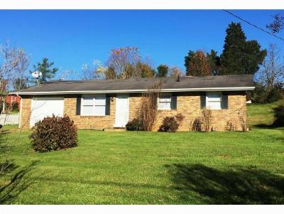 Kingsport Single Family Home For Sale: 116 Chateaugay Road