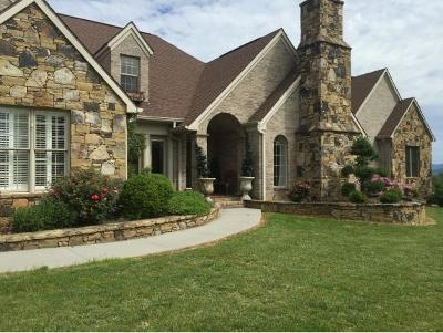 Elizabethton Single Family Home For Sale: 130 Country Acres Drive