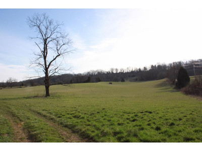 Washington-Tn County Residential Lots & Land For Sale: 238 McCarty Church Road