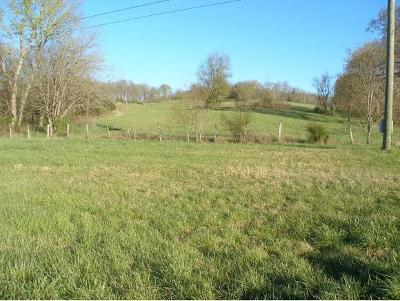 Residential Lots & Land For Sale: 421