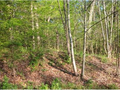 Johnson City Residential Lots & Land For Sale: 221 Sterling Springs