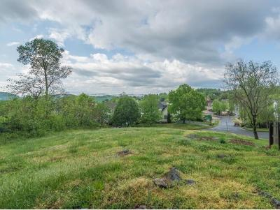 Johnson City Residential Lots & Land For Sale: Lot 64 Green Valley Dr