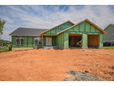 Piney Flats Single Family Home For Sale: 205 Merry Anne Dr