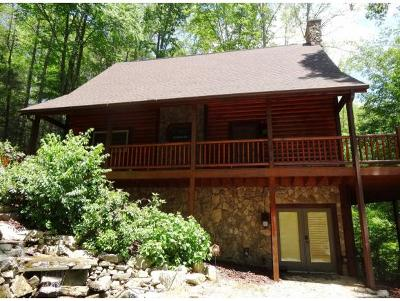 Carter County Single Family Home For Sale: 232 Lakeside Dr