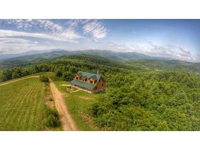 Roan Mountain Single Family Home For Sale: 312 Walnut Mountain Farm Loop