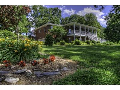 Abingdon Single Family Home For Sale: 13850 Vintage View