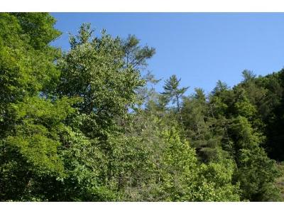 Unicoi Residential Lots & Land For Sale: 1000 Little Branch Road