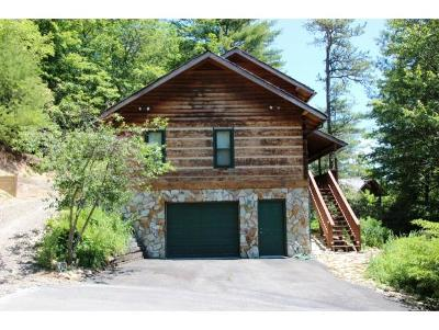 Mountain City Single Family Home For Sale: 208 Ivywood Ln