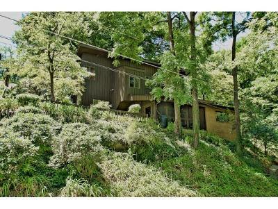 Johnson City Single Family Home For Sale: 501 West Chestnut Street