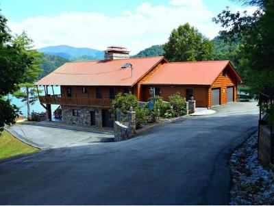 Carter County Single Family Home For Sale: 282 Campbell Road