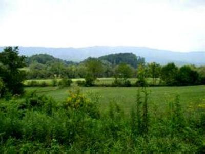 Butler Residential Lots & Land For Sale: Sink Valley Road