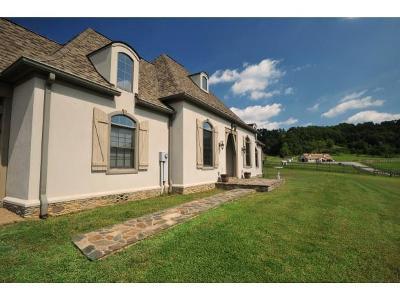 bristol Single Family Home For Sale: 16324 Old Jonesboro Road