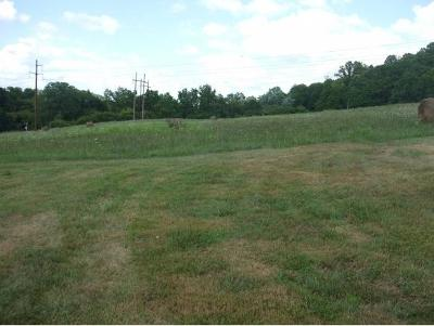 Johnson City Residential Lots & Land For Sale: 4946 N Roan St.
