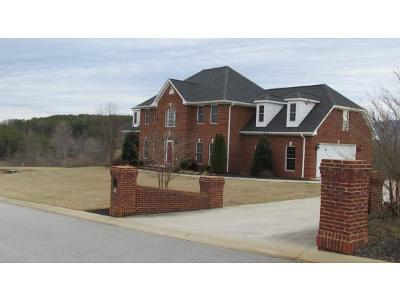 Greeneville Single Family Home For Sale: 31 Riverview