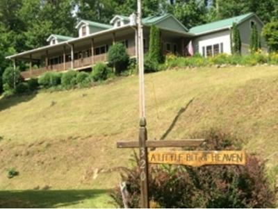 Roan Mountain Single Family Home For Sale: 320 Highpoint Drive