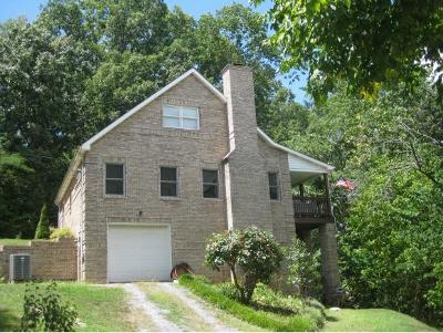 Piney Flats Single Family Home For Sale: 3132 Rocky Springs