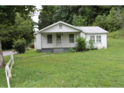 Abingdon Single Family Home For Sale: 24058 Cox Mill Road