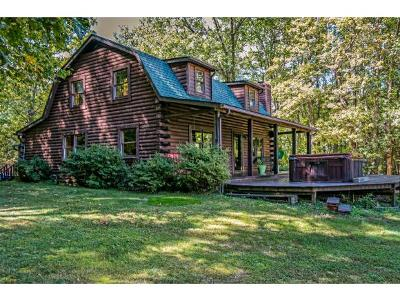 Unicoi Single Family Home For Sale: 400 Shaver Ridge Rd