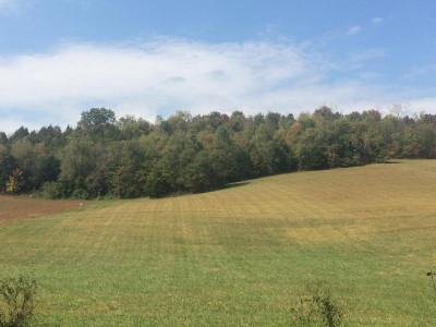 Washington-Tn County Residential Lots & Land For Sale: Carroll Creek