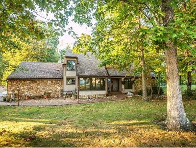 Bristol Single Family Home For Sale: 5829 Old Jonesboro Road