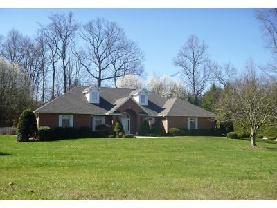 Kingsport Single Family Home For Sale: 1005 Stagshaw Lane
