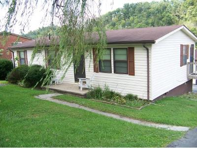Bluff City Single Family Home For Sale: 226 Lakeview Dr.