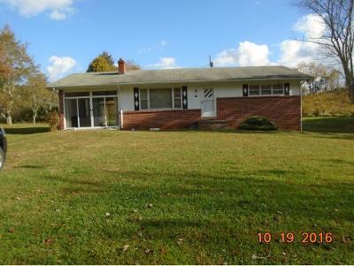 Mountain City Single Family Home For Sale: 888 Hospital Road