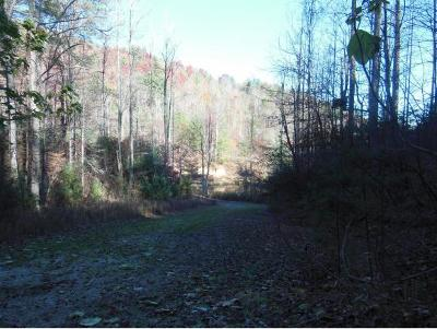 Butler Residential Lots & Land For Sale: 307 Honeymoon Hollow
