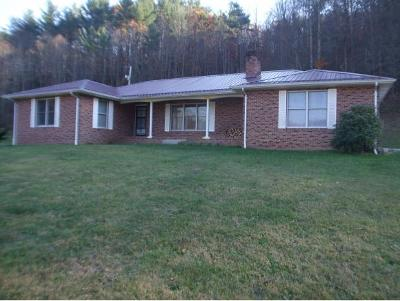 Flag Pond Single Family Home For Sale: 1337 Rice Creek Rd.