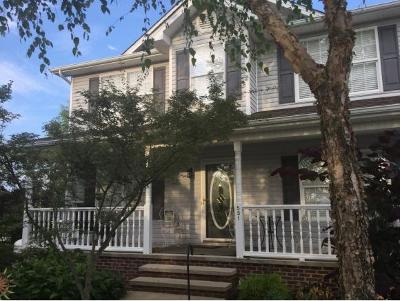 Telford Single Family Home For Sale: 531 Leesburg Rd