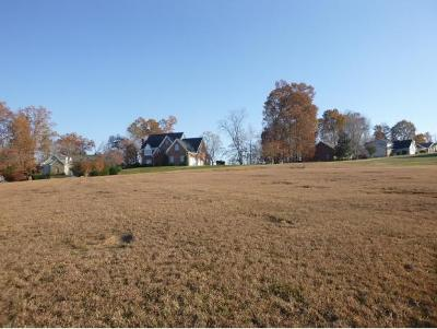 Johnson City Residential Lots & Land For Sale: 729 Harbor Point Drive Lot #8