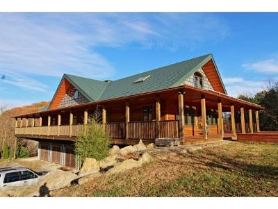 Jonesborough Single Family Home For Sale: 544 Hartmantown