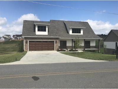 Johnson City Single Family Home For Sale: 737 Hales Chapel Road