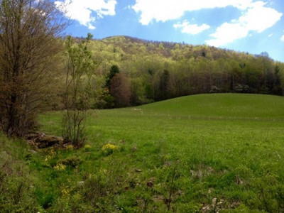 Washington-Tn County Residential Lots & Land For Sale: Carroll Creek Road