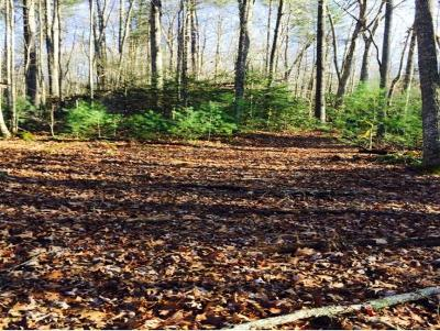 Hampton Residential Lots & Land For Sale: TBD Highway 67 North