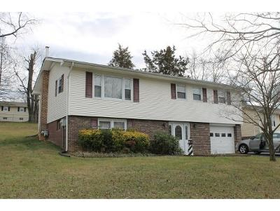 Bristol Single Family Home For Sale: 204 Winding Way Road