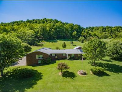 Jonesborough Single Family Home For Sale: 268 Chestnut Grove Church Road