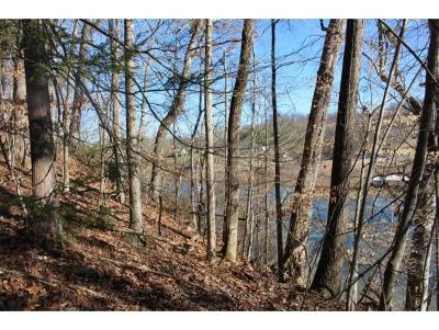 Piney Flats Residential Lots & Land For Sale: Lot 1 Lake Point Dr