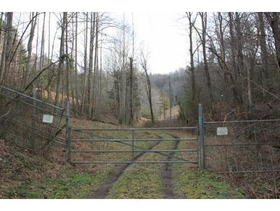 Unicoi Residential Lots & Land For Sale: TBD Daddy Moore Rd
