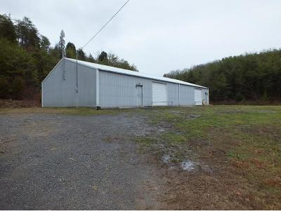 Hawkins County Commercial For Sale: 2550 Hwy 66 S #1