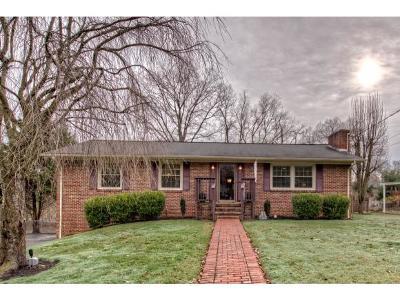 Bristol Single Family Home For Sale: 320 Brookwood Dr