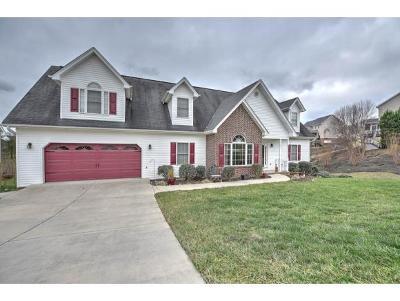 Blountville Single Family Home For Sale: 273 Southridge