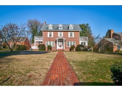 Kingsport Single Family Home For Sale: 1224 Watauga St.